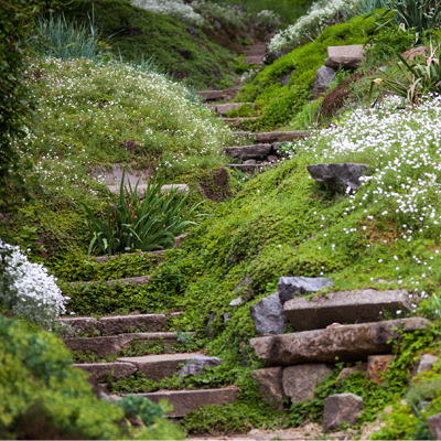 How to plan a garden on a steep slope | BUILD