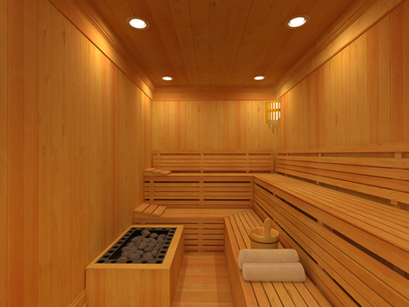 Image result for how to choose home sauna