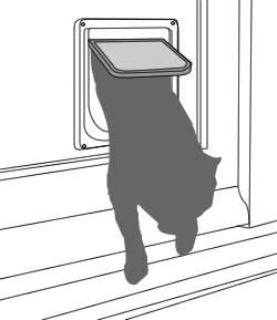 Dog Doors, Cat Flaps And Pet Doors
