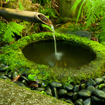 How to overcome a boggy or wet garden | BUILD on Landscaping Ideas For Wet Backyard id=44285